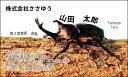 【オリジナル名刺印刷】趣味・職業名刺[H_566_m]《カラー名刺片面100枚入ケース付》テンプレートを選んで簡単名刺作成フリーのご職業からスポーツ、ホビーまで豊富なデザインをご用意!【カブトムシ・昆虫・自然】