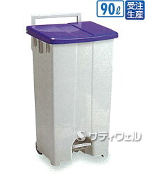 【送料無料】【受注生産品】テラモトボックスカート90青/白90LDS-224-309-3