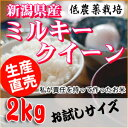 サトウファームのミルキークイーン2Kg 【29年新潟産】【0...