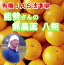 能勢さんの無農薬 八朔 4kg 有機JAS法 準拠栽培 はっさく みかん 送料無料 有機みかん しま