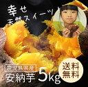 安納芋(鹿児島県産)5kg 【送料無料】 さつまいも 自然貯蔵で追熟済の安納いも