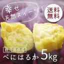 【数量限定】鹿児島県産 べにはるか5kg【送料無料】さつまいも 紅はるか まるでスイーツ 焼き芋やお菓子作りにもってこい!