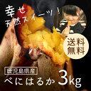 鹿児島県産 べにはるか3kg 【送料無料】さつまいも 自然貯蔵で追熟済の紅はるか まるでスイーツ 焼き芋やお菓子作りにもってこい!