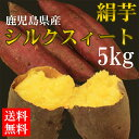 シルクスイート5kg 鹿児島県産【送料無料】テレビでも取り上げられた話題の新品種!まるで絹のような滑らかな食感と甘さのさつまいも