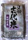 白神古代米(1kg)黒 東雲農園