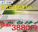 能代白神ねぎ5kg【送料無料】※こちらは冷蔵便での発送となります。他の商品との同梱はできません。