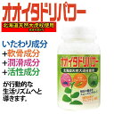 〔k〕オオイタドリパワー 240粒サプリ サプリメント 健康食品 植物性サプリメント 大痛取 イタドリ 植物性