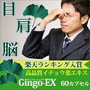 Gingo-EX 60�J�v�Z�������Z�x �C�`���E�t �G�L�X 120ml �t���{�m�C�h ���Y�� �M���R