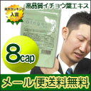 [6 120 mg of satsuma drugstore] Gingo-EX capsule ● high density ginkgo biloba (Gin co-ギンゴ) 900 yen equivalency 【 RCP 】 of the 】[ Chinese medicine impossible of email service free shipping, collect on delivery]