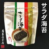 韓国風味サラダ海苔 卓上スタンドタイプ 8切64枚入 (化学調味料無添加/ちばぎょれん製造品)