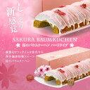 【澤井珈琲】桜のバウムクーヘン(バームクーヘン/スイーツ)