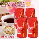 澤井珈琲   春味バージョンにパワーアップ  ドカンと詰ったコーヒー福袋 コーヒー コーヒー豆 珈琲豆 春味グルメ
