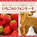 【澤井珈琲】完全手作り いちごシフォンケーキ レギュラー