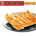 【7月2日 9:59まで5倍】宇都宮餃子館 食べ比べ8色セ