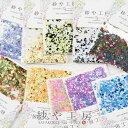 【ママ割P5倍】レジン封入素材 丸ホログラム セット ミック...
