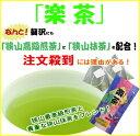 日本茶高級ティーバック狭山茶・楽茶【全国送料サービス】!【緑茶ティーバッグ】海外のお土産に最適