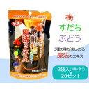 【送料無料】味源 焼酎が更に楽しくなる魔法のエキス アソート 9袋入(3種×各3)×20セット10P11Apr15【軽税】