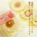 【サンクゼール】ドライフルーツ入り贅沢ゴーフレット【リンゴ】4枚入り