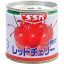 【訳あり】 賞味期限:2020年6月29日 SSK レッドチェリー 枝付 (90g) フルーツ缶詰