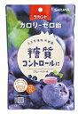 【訳あり】 サラヤ ラカント飴 ブルーベリー味 (40g)