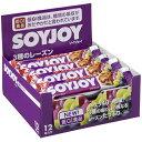 【12本セット】 大塚製薬 SOYJOY (ソイジョイ) 3種のレーズン (30g×12本) 大豆バー