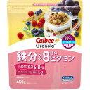 【訳あり】 賞味期限:2022年1月18日 カルビー グラノーラプラス 鉄分&8種のビタミン (450g) 栄養機能食品