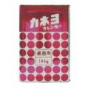 カネヨ石鹸 カネヨクレンザー粉末 (14kg) 1缶 【T】 クレンザー 業務用