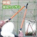 伸縮 枝切りバサミ (1本) ガーデニングの必需品♪庭のお手入れ・剪定に! [02P03Dec16]