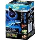 【J】 エキゾテラ ナイトグロー ムーンライトランプ 50W(1個入)