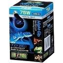 【J】 エキゾテラ ナイトグロー ムーンライトランプ 75W(1個入)