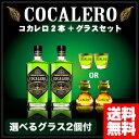 コカレロ COCALERO 29度 700ml x 2本セット 選べるコカレロボムグラスorショットグラス 各2個付き 送料無料 あす楽対応