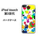 ipod-touch5-uvc01329