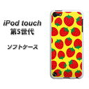 ipod-touch5-tpwsc812