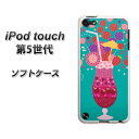 ipod-touch5-tpw00137