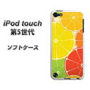 Ipod-touch5-tpw00429