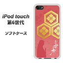 ipodtouch6-tpwab822