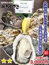 福岡県糸島産 みるくがき 30個セット