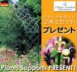 【Classic Garden Elements】【ガーデンアーチ】ヴィクトリアンアーチ R5 プランツサポート2本1セットプレゼント付