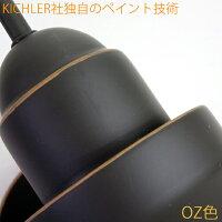 �����顼�饤��K9021