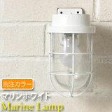 Furanjihowaito Gadenraitomarin] [黄铜花园灯[【当社別注カラー】【Marine Lamp】マリンランプ・マリン フランジホワイト]