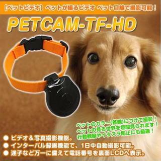ペットの目線で動画や写真が撮影できる!(犬や猫等)留守のペットをカメラ視線で確認迷子になっても電話番号を表示できる、ペットの目線を記録・ペット用カメラHD