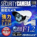 屋外 赤外線暗視カメラ 防犯カメラ (OL-019) 強力赤外線LEDライト 24時間常時録画 暗視...