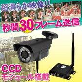 WTW-TRR79F無線カメラWTW-TRR79set赤外線LED防塵防水カメラワイヤレス無線で赤外線LED暗視&防塵&防水カメラ超高性能機を40%OFF!!