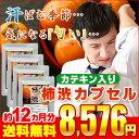 カテキン入り柿渋カプセル 約12ヵ月分 【seedcoms_D】12D