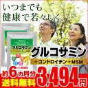 2型コラーゲン配合グルコサミン&コンドロイチン&MSM 約6ヵ月分【seedcoms_D】 6D【s10】