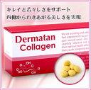 秘密は新成分デルマタン!次世代美容サプリメント【デルマタンコラーゲン】デルマタン硫酸、低分子マリン【コラーゲン】、【ヒアルロン酸】(フカヒレ由来)、【コンドロイチン】等配合ф【2sp_120611_b】 サプリ supplement collagen コラ-ゲン