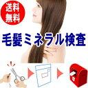 【送料無料】毛髪ミネラル検査キット ら・べるびぃ予防医学研究所  26元素のミネラルを計