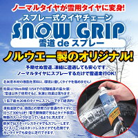 ���ץ졼��������������󥹥Ρ�����å�(snowgrip)450ml