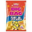 カルビー ビッグバッグうすしお味 170g×12個×2セット