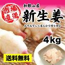 生産量全国2位 新しょうが 約4kg 箱入り 新生姜 【和歌山産】【新生姜】【新ショ
